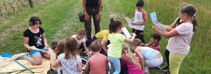 Természetbarát gyerekek | DÉLMAGYAR Kübekháza, Szeged és környéke